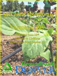 volunteer day announcement 6.28