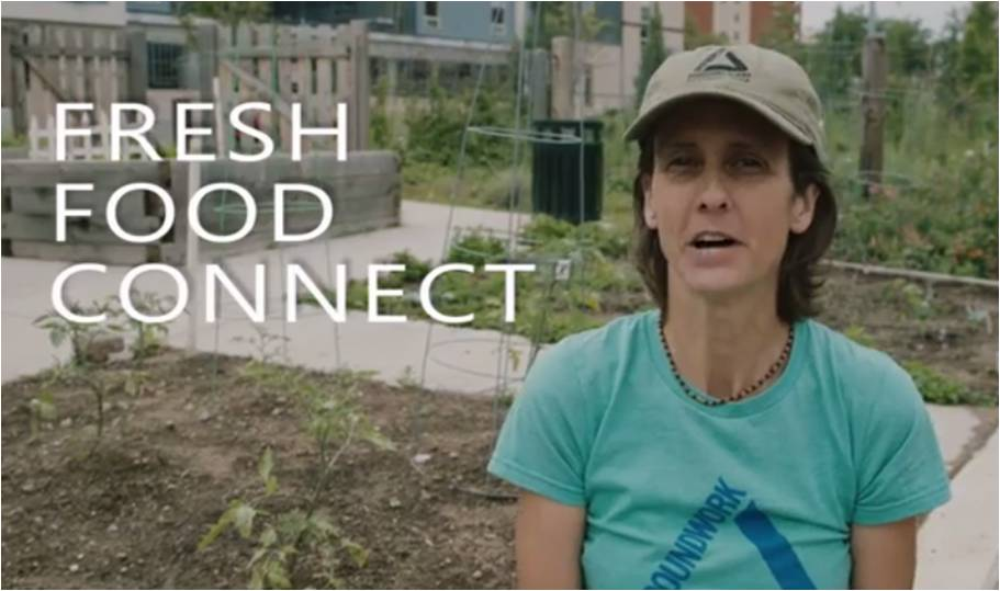 Fresh Food Connect Screen Shot II